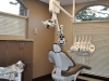 West Coast Endodontics Dental Office
