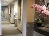 West Coast Endodontics Hallway
